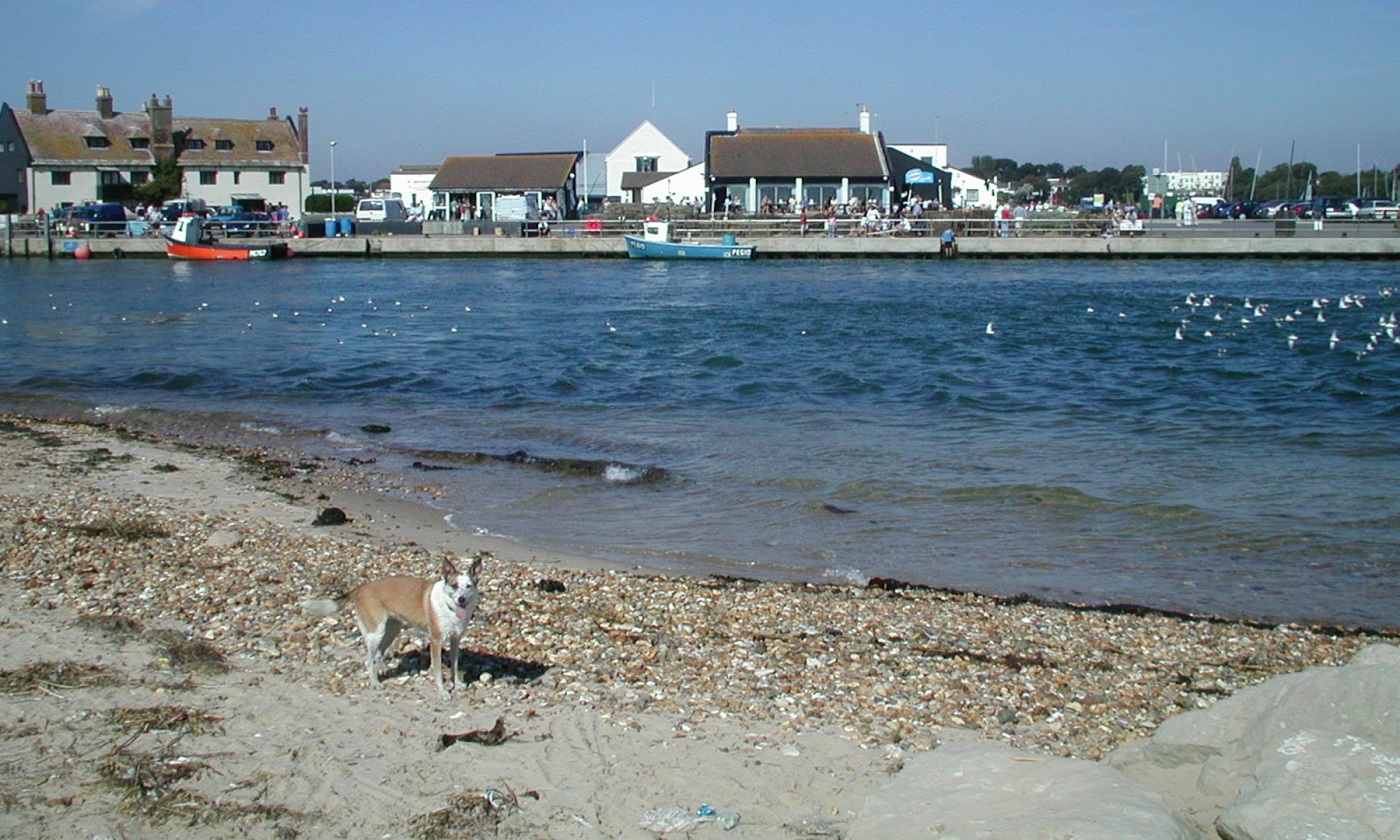 Mudeford Holidays